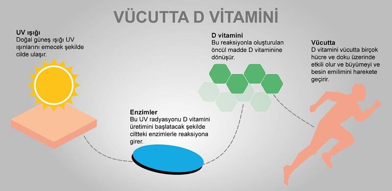 Güneşten Alınan D Vitamini