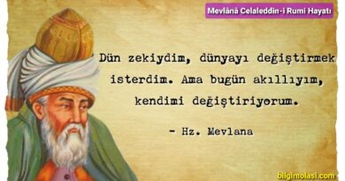 Mevlânâ Celaleddin-i Rumi Hayatı